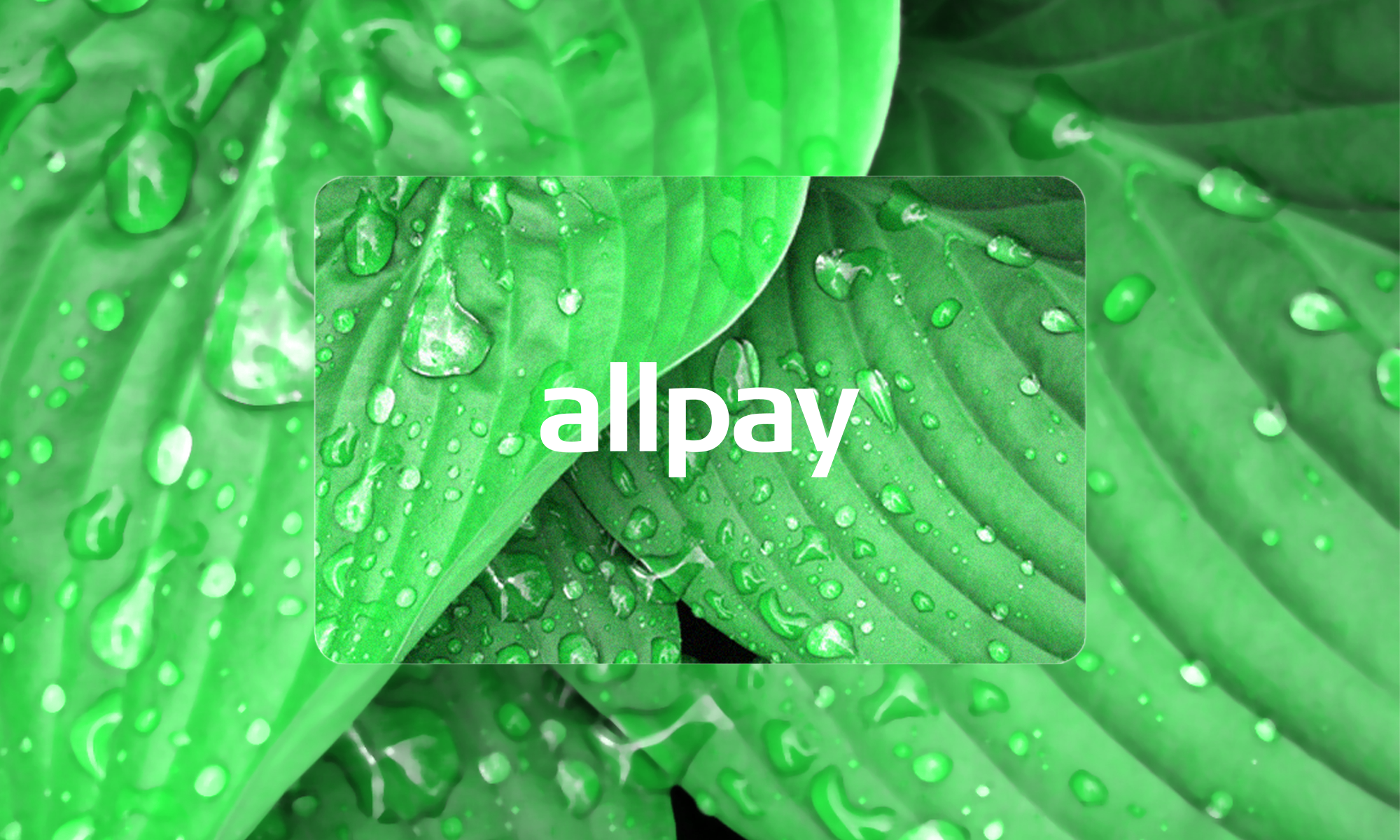 allpay plants the seed for the next generation